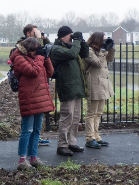 Irwell-Bird-Survey-Volunteers