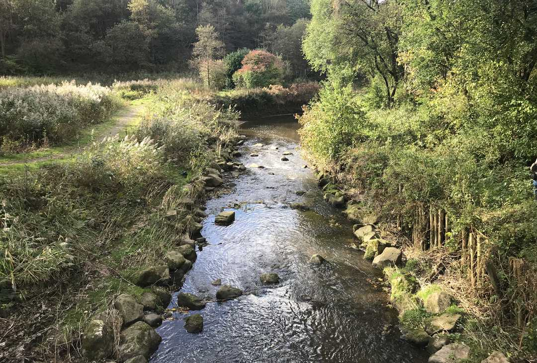 "Greater Manchester is one of four UK settings chosen to ""pioneer"" new ways of working in order to better protect and enhance our natural environment."