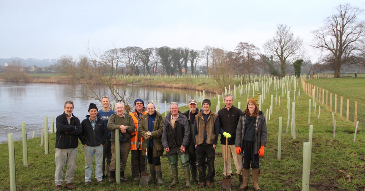 16,000 trees planted thanks to volunteers at Ribble Rivers Trust