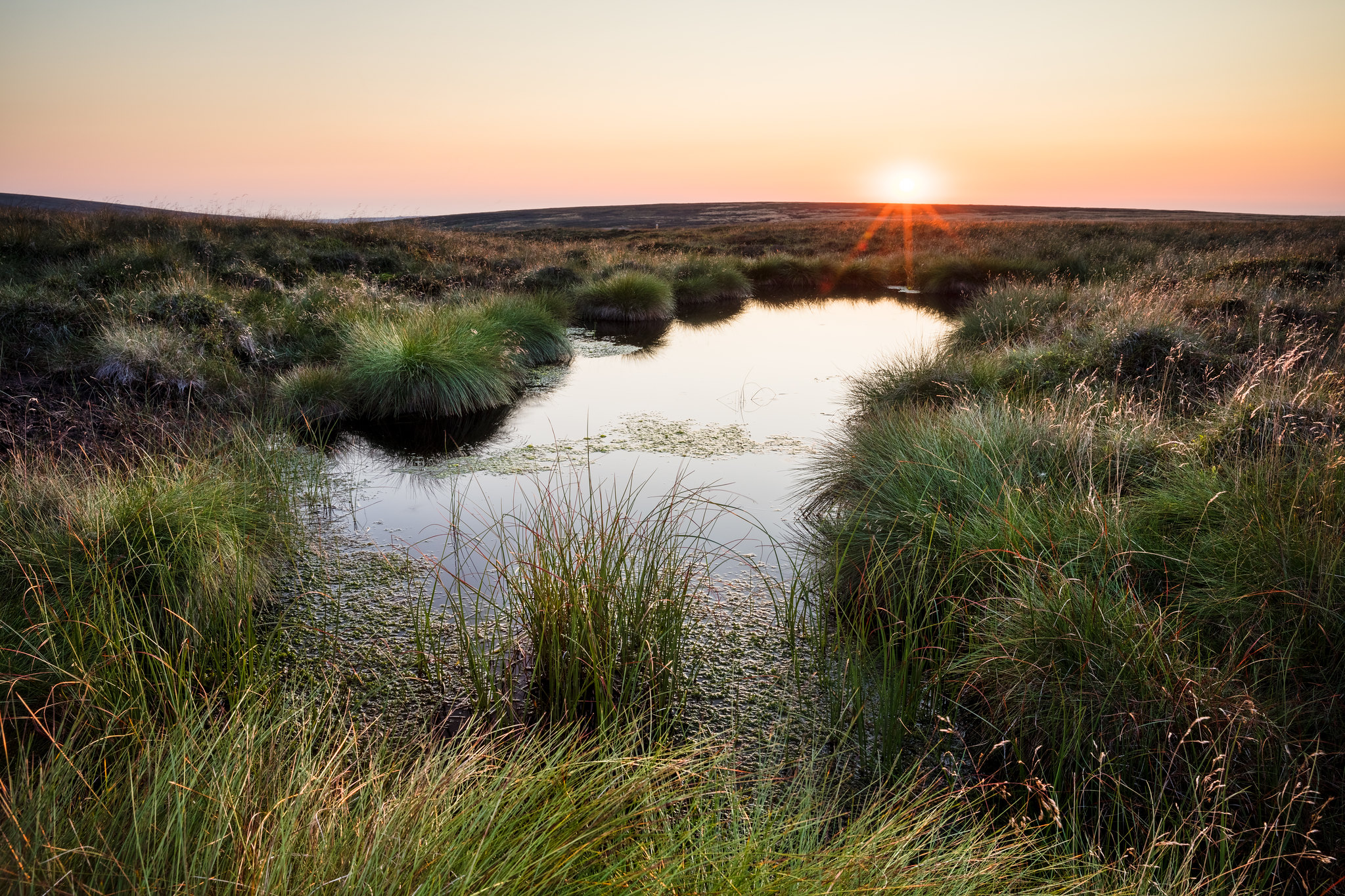 Blog: Exploring ways of achieving sustainable future investment into peatland conservation (Moors for the Future Partnership)