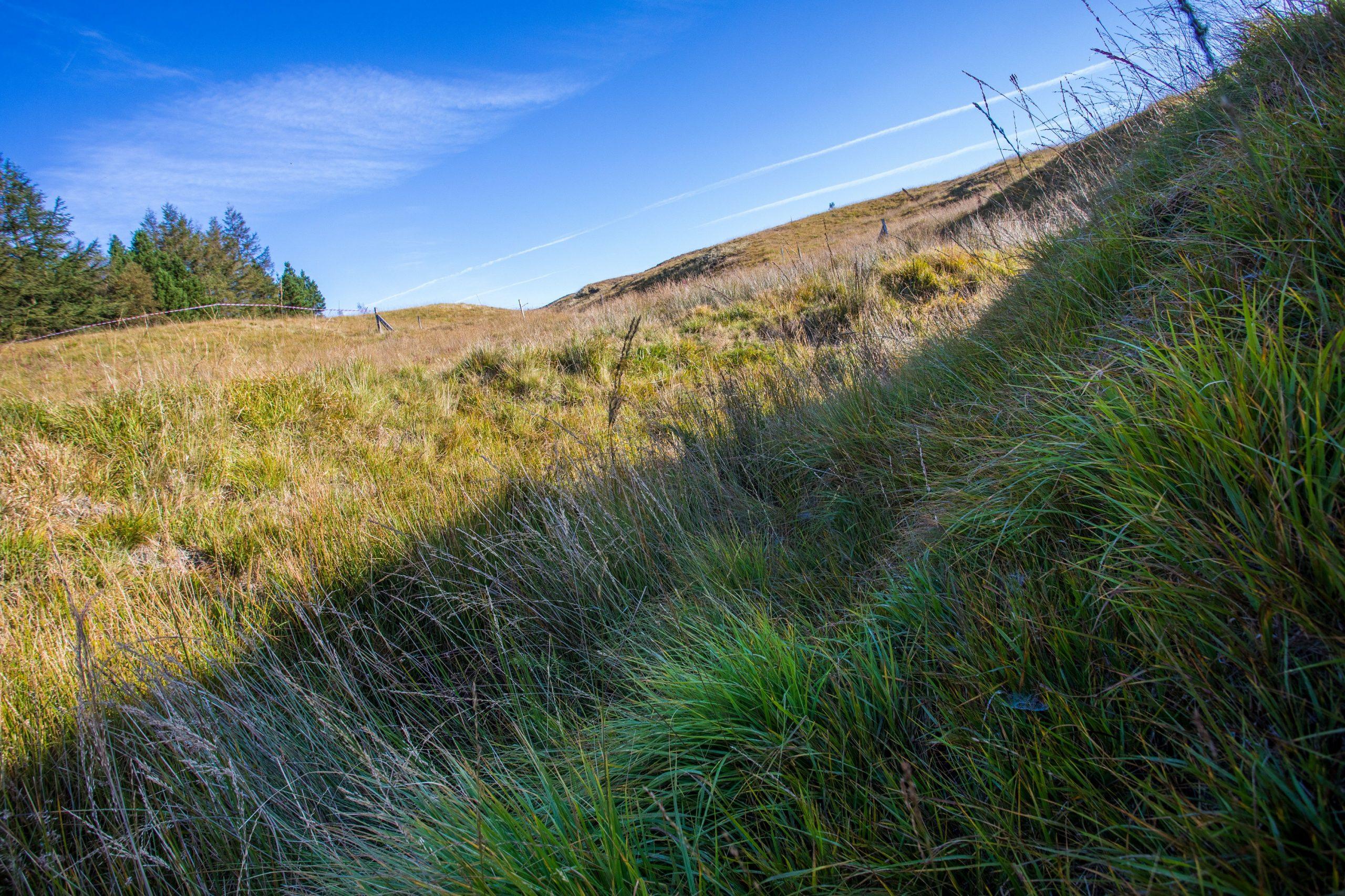Image showing Crompton Moor before installations