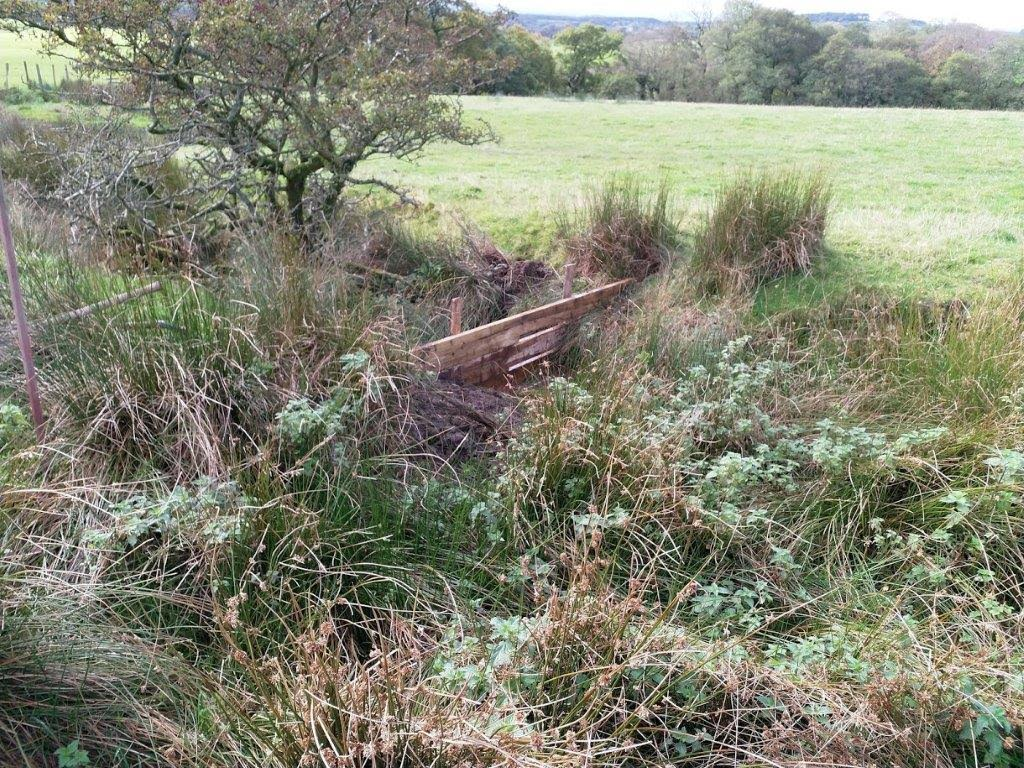 Project update:  Innovative funding for Wyre natural flood management interventions