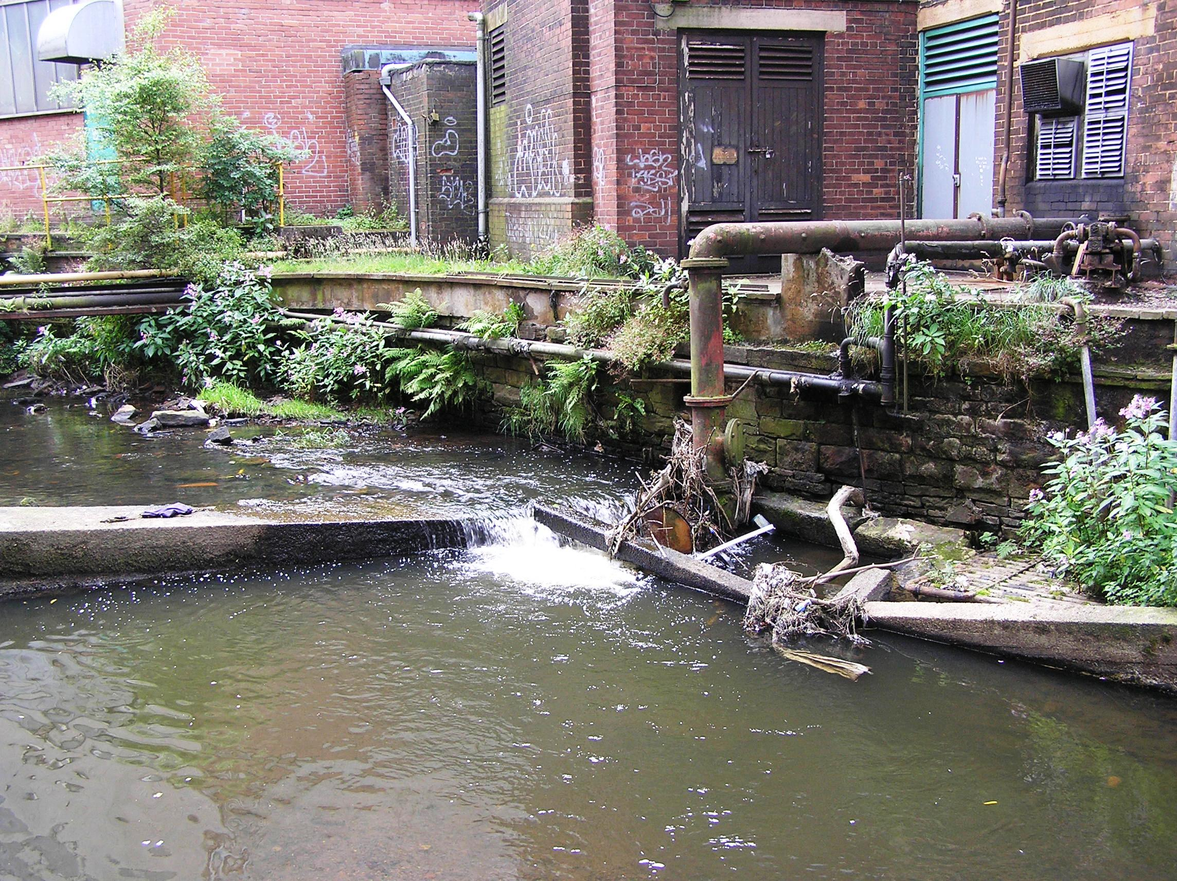Project Update: Bringing the River Irk to Life (BRIL)