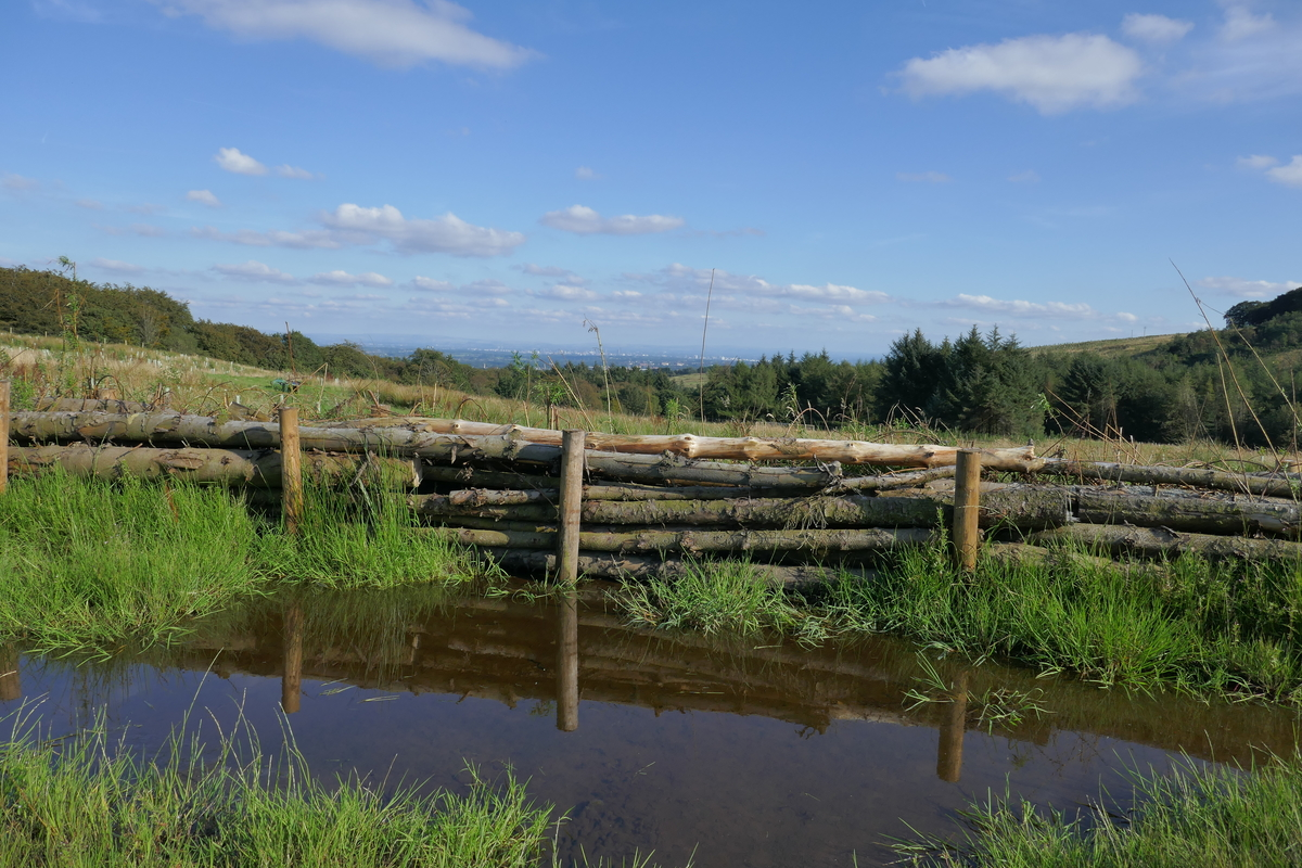 Project update: Delivering multiple benefits and ecosystem services at the Smithills Estate, Bolton.