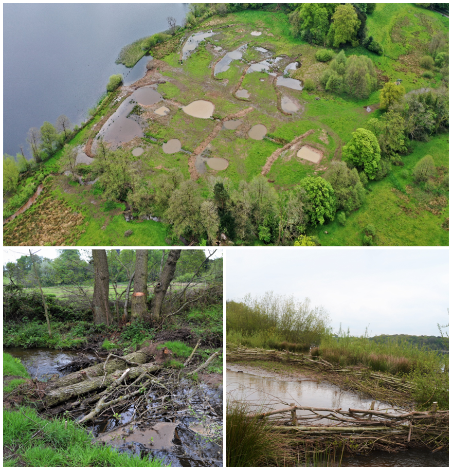 Pools and leaky dams at Rostherne Mere